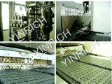 二重層の飴玉の生産ライン(GD300)