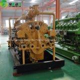 Охлаженный водой генератор природного газа 300kw/естественный генератор