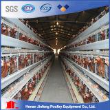 Клетки цыпленка слоя высокого качества автоматические гальванизированные