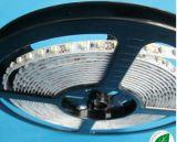 3528 tiras flexibles disponibles blancas y de cobre de interior del PWB LED