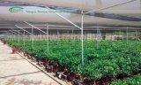 Chambre économique d'ombre pour l'agriculture