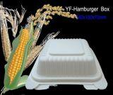 Dispostable kompostierbarer Paket-Nahrungsmittelkasten