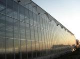 الدفيئة رخيصة زجاجيّة لأنّ زراعة/إعلان