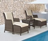 Wicker сада/таблица мебели ротанга установленные и стул (LN-2121)