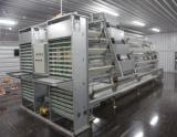 Doubles étages de Chambre de poulet de structure métallique