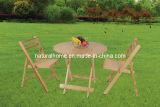 Hölzerne Tabelle und Stuhl (KTD-R913 912CH-W)