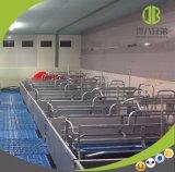 Equipo de granja de cerdo para el embalaje de parto de parto de la base de la puerca