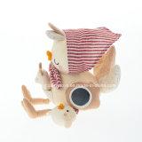 Activité de collecte de coton Hen-Organic en peluche