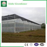 Serre del film di materia plastica della Multi-Portata del giardino/azienda agricola/traforo per Rosa/patata
