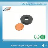 Hard sinterizzato (32-18*6mm) Ferrite Magnet per Speaker