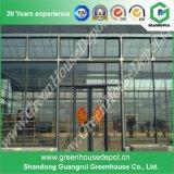 Grande serre en verre économique avec système de ventilation à vendre