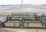 Gabbia quadrata di pesca dell'HDPE in mare profondo