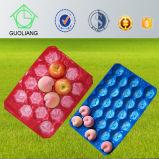 Large&Small durchlöcherte die Blase, die pp.-Plastikobst- und gemüseBildschirmanzeige-Tellersegmente verpackt