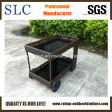 Chariot en osier/chariot solaire/chariot extérieur/chariot à rotin (SC-B5064)