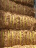 야자열매 섬유