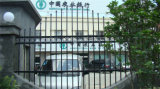 Rete fissa residenziale industriale elegante personalizzata 91 del giardino di obbligazione