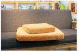 Couvre-tapis d'animal familier de part de pain en tant que bâti de crabot de coussin de chat