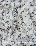 福建省安いBalaの白い花こう岩の石の建築材料の床タイル