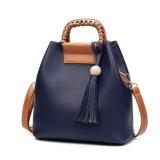 Sacchetto creativo della traversa della spalla della signora Fashion Handbag Design Women