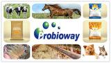 GMP bestätigte pferdeartige Probiotics Tierfutter-Ergänzungs-Eigenmarke