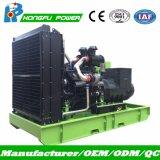 резервное тепловозное производство электроэнергии 825kVA установило для коммерческого использования