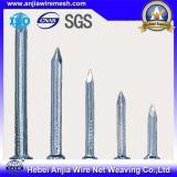 Bwg3-20 poli de haute qualité du fil de fer commun clou galvanisé