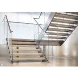 Pisadas de escalera de cristal del roble de las guarniciones de la barandilla de la escalera recta del metal