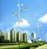 Generador de turbina fácil de viento de la instalación 300W 12V/24V para el uso casero