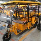 中間の東の熱い販売のRainproofの電気乗客の三輪車