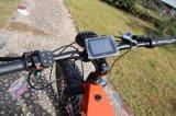 Leili 72V 5000W Fat vélo Vélo électrique avec écran couleur TFT