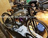 De aangepaste van het Strand Retro Klassieke 250W Uitstekende Elektrische Bicycle/350W Elektrische Bike/E Bicycle/750W E Bike/500W Bijl Pedelec, de Dubbele VoorSchok En15194 van de Kruiser van W