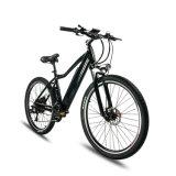 6061アルミ合金350Wのハブモーター電気バイク