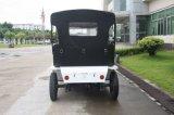 Gran la certificación CE 48V de carros de golf para el aeropuerto