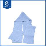 Großhandelsform-Winter-Hut-Schutzkappewollen verbundener Beanie mit Schal