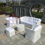 現代白い屋外の庭の屋内余暇のPEの藤の組合せのソファー
