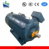 Ie2 Ie3 hohe Leistungsfähigkeit 3 Phasen-Induktion Wechselstrom-Elektromotor Ye3-355L2-10-160kw