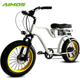 Couleur blanche Silverfish Batterie 48V 20.3ah 48V 750W vélo électrique