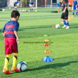 Fußball-Beweglichkeits-Platten-Kegel eingestellt