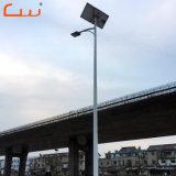 Usine de gros de produits de plein air 30W 60W à LED pour la rue d'éclairage solaire
