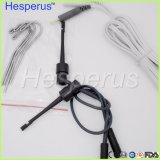 Clips de mesure de languette de crochets de supports de fichier de cordon de sonde d'accessoires de repère d'apex de clip de fichier de traitement endodontique de qualité
