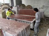 La taglierina di pietra automatica del blocco per il grande gruppo del blocchetto del granito di taglio ha veduto la macchina (DQ2500)