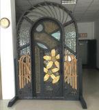 Роскошный из кованого железа двойной записи новой конструкции дверей (EI-019)