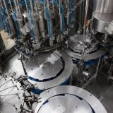 China-BerufsgetränkManafucturer kleine Wasserpflanze