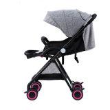 Handfalten-BabyPram des Fabrik-Großverkauf-Baby-Spaziergänger-Unterstützungs-Soem-Kauf-einer