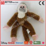 Speelgoed van de Aap van de Pluche van de Douane van China het Zachte Gevulde Dierlijke voor Jonge geitjes
