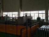 Mitusbshi Passagier-Höhenruder-Ersatzteile, die Tür landen