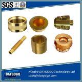 Encaixes farpados de bronze duráveis da inserção da mangueira do fabricante de China