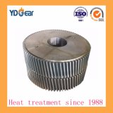 Cement Industry Gear Box에 전송 Gears Used