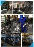 Protezione ASTM A403 2 '' Sch10s dell'acciaio inossidabile