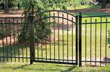 Clôtures de jardin en fer ornemental avec Gate